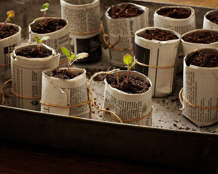 Ask the Expert: 10 Tips for a Zero Waste Garden