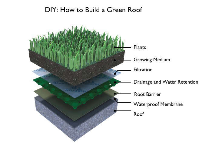 green-roof-membrane-layers-gardenista