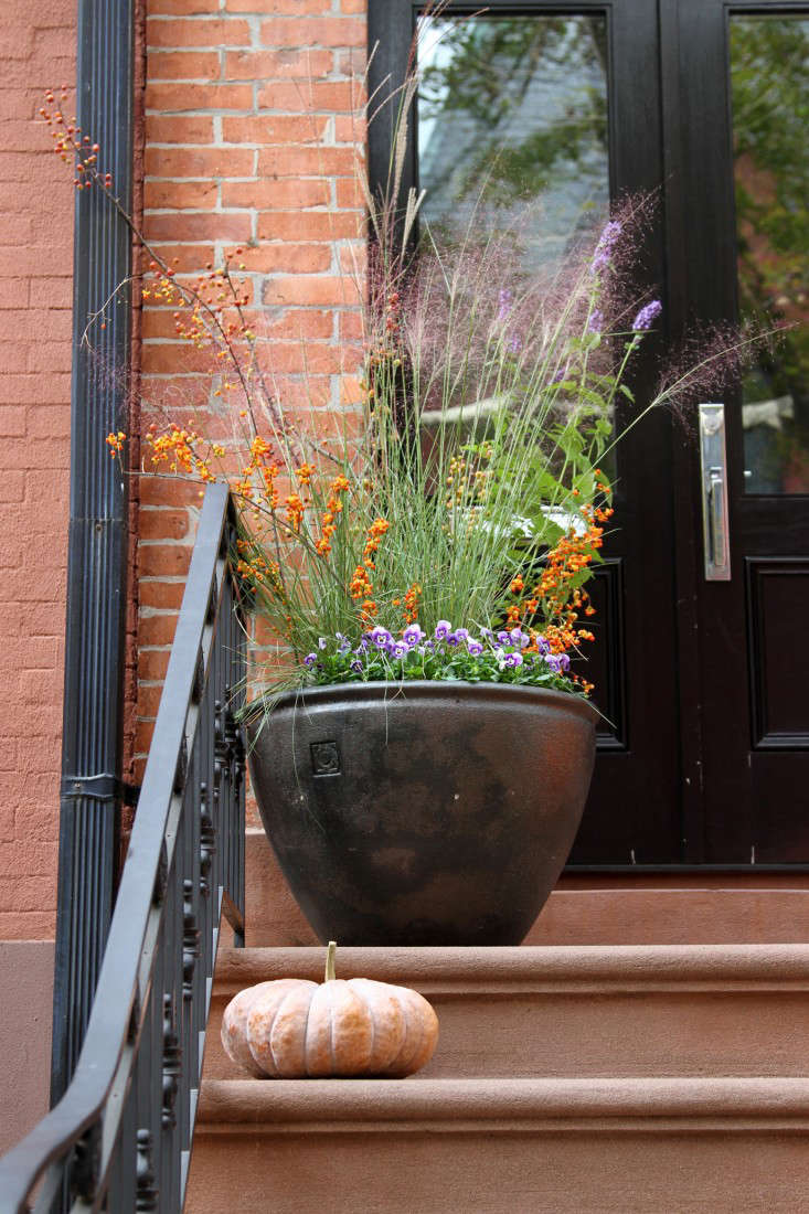 Hardscaping 101: Front Stoops - Gardenista