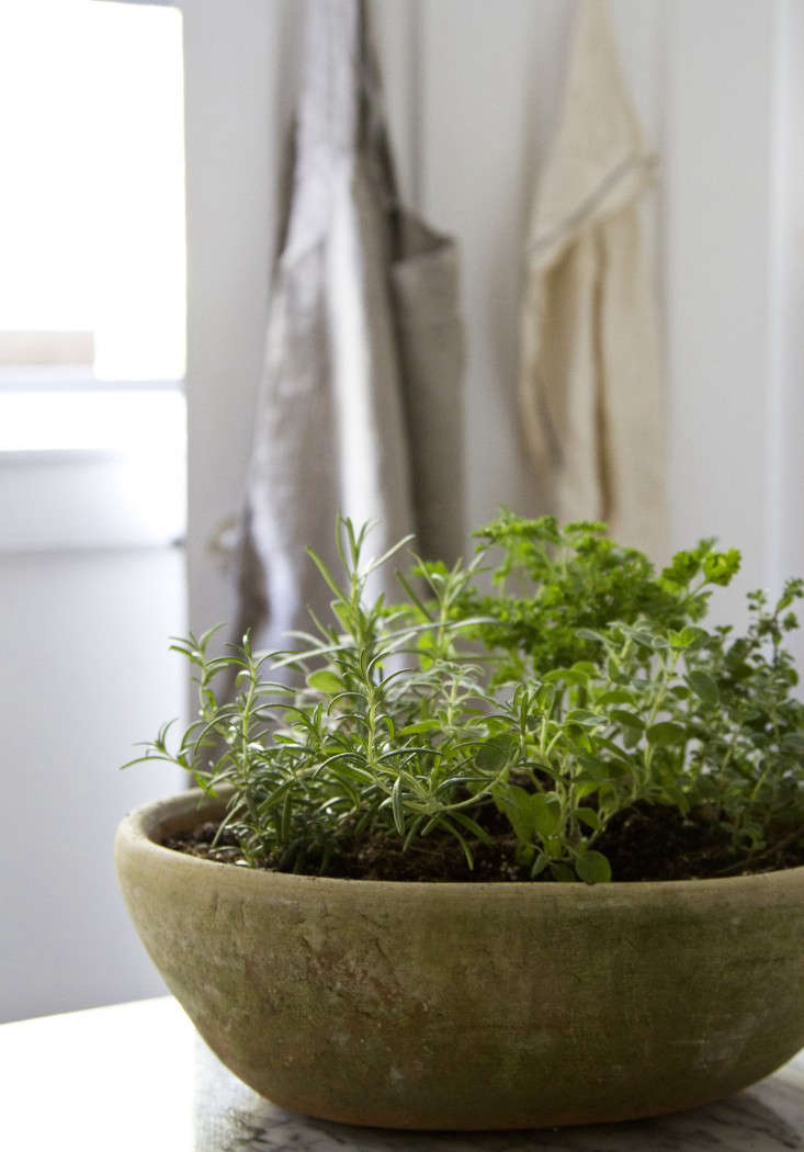 Above: All You Need Is One Pot, Five Herbs, A Bit Of Soil, Plenty Of  Sunshine Andu2013prestou2013you Have An Herb Garden.