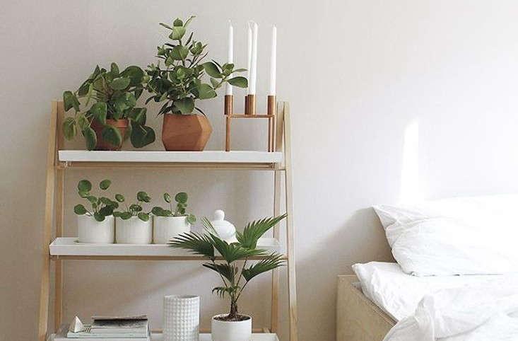 Plant Bookshelf Outdoor