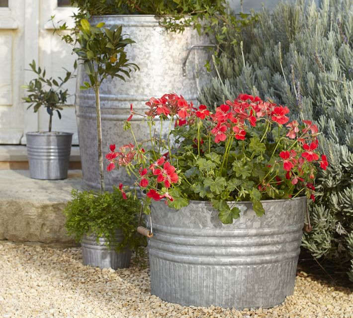 Above: An extra large barrel Eclectic Galvanized Metal Planter measures 24  inches high and is $149 from Pottery Barn. - 10 Easy Pieces: Zinc Barrel Planters - Gardenista