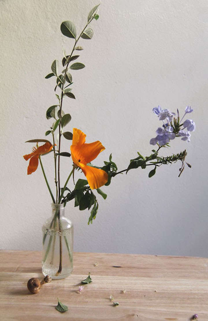 Everyday Flowers With Los Angeles Floral Artist Lili Cuzor Gardenista