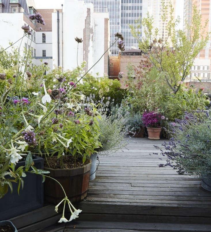 Garden Visit At Home With Designer Julie Weiss In Manhattan
