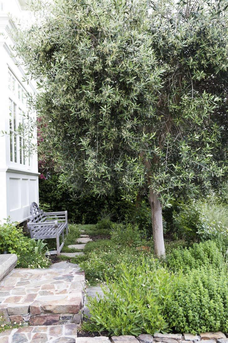 Menu For Olive Garden: Garden Visit: A Modern CA Garden Inspired By The Classics