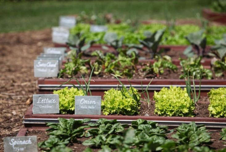 above for slate garden markers similar to the ones in the white house garden see highlow slate garden marker kits for more garden plant labels