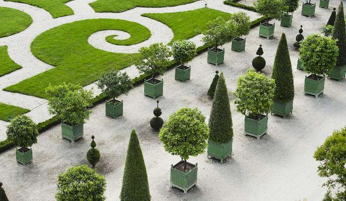 Lovely Above: The Gardens At Versailles Lined With Trees Planted In Boxes. The  Boxes Were Created For Louis The XIVu0027s Orange Tree Collection By Andre Le  Notre, ...