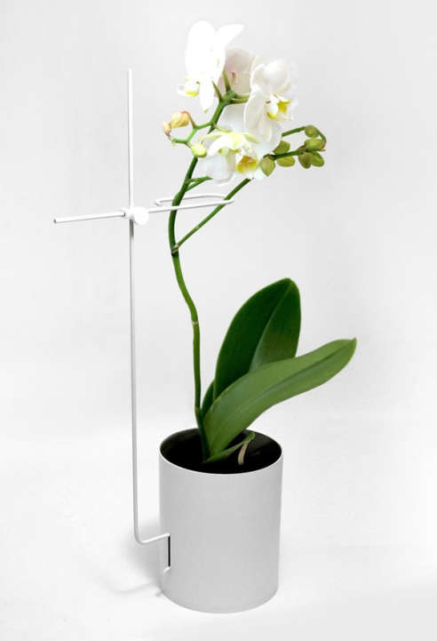 Yang Ripol Orchid Pot