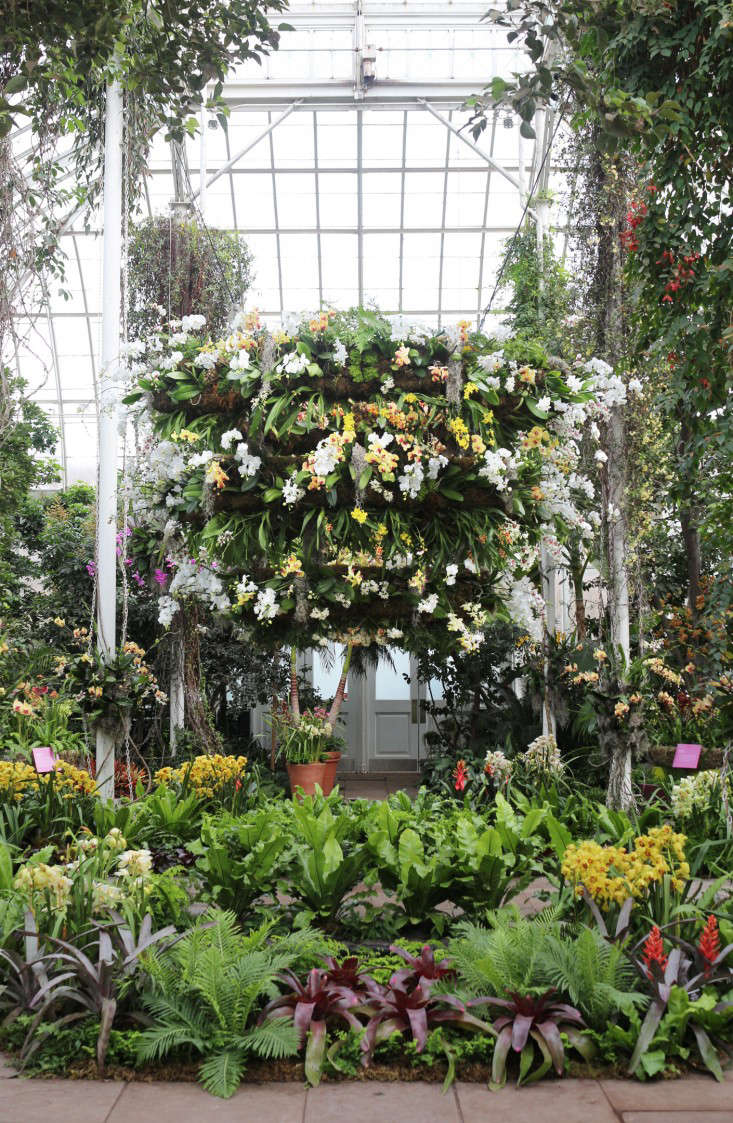 Opening ceremony a preview of new yorks orchid show gardenista above the tropical orchids cascading from the glass ceilings are members of the largest flowering family on earth more than 30000 species strong mozeypictures Gallery