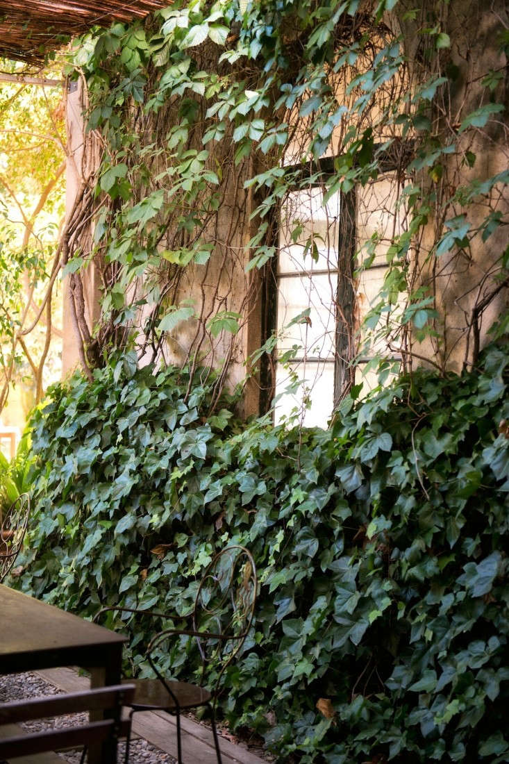 The Best Secret Garden In Barcelona Gardenista