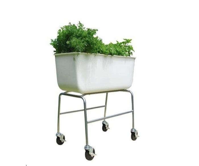 An Edible Garden On Wheels Gardenista