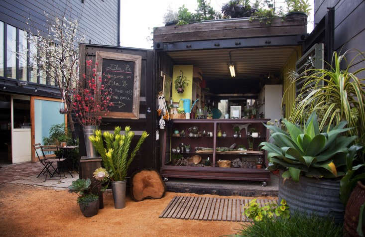 Above: Chapman Uses The Shipping Container As Office And Retail Space; From  Behind A Counter, She Sells Terrariums, Fresh Flowers, And Hanging Planters.