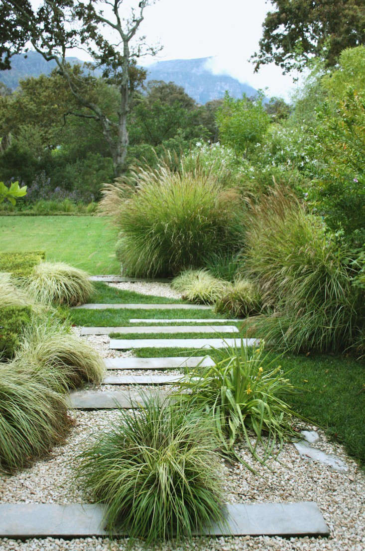 south africa garden grasses boxwood gardenista - Garden Design Using Grasses