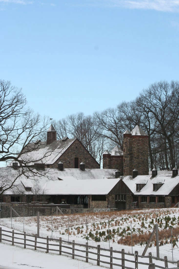 ask the expert winter garden tips from stone barns center