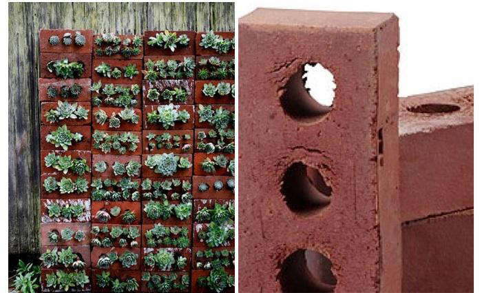 Consider This Succulent Wall Using Cored Clay Structural Bricks Each Brick Has Three Holes That Can Serve As Planting Spots Oldcastle Red