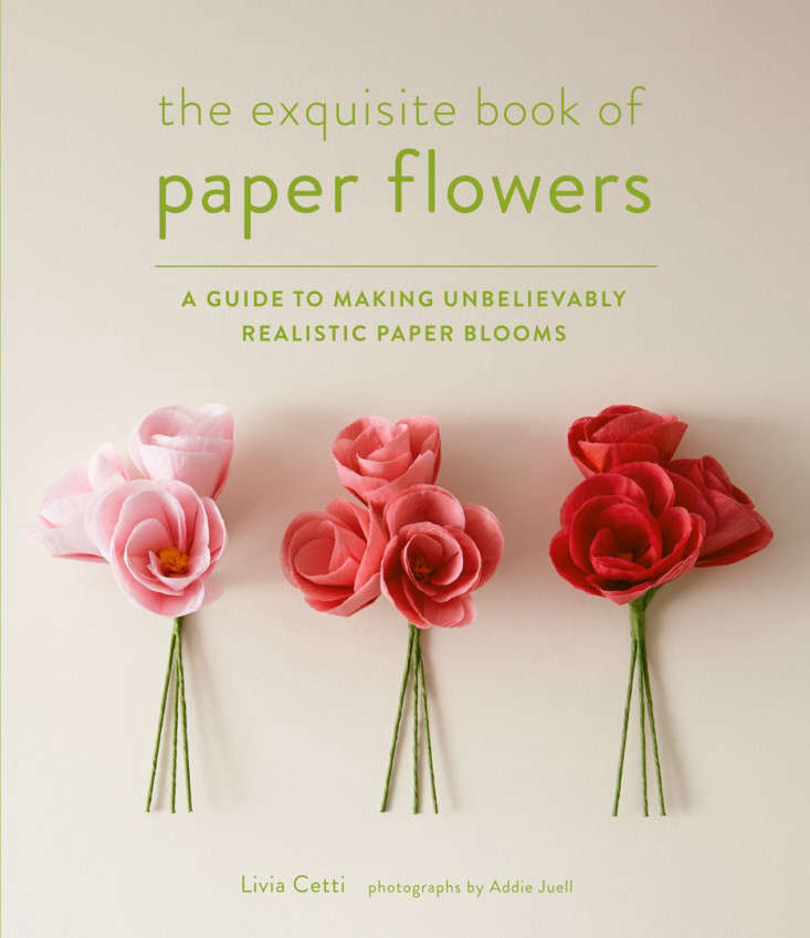 Required reading the exquisite book of paper flowers by livia cetti the exquisite book of paper flowers is available from abrams books for 2495 as well as through amazon and local booksellers mightylinksfo