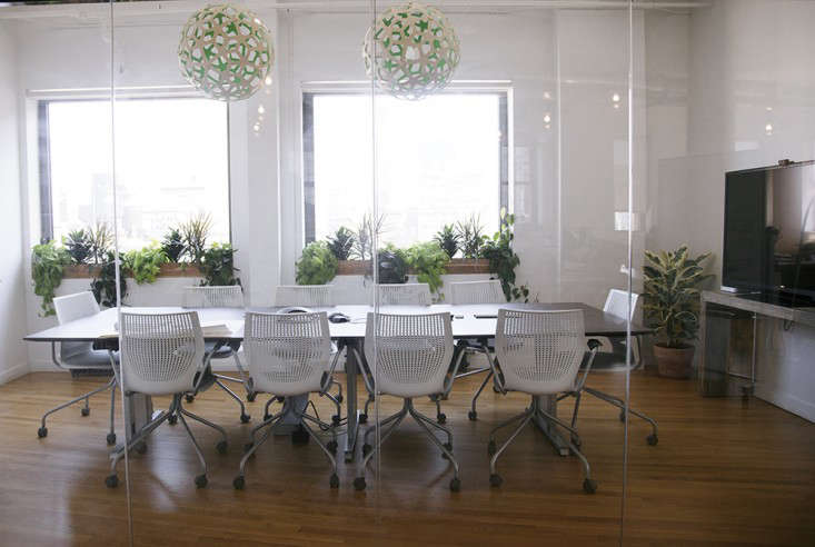 Ask the Expert 10 Tips for Office Plants from The Sill Gardenista