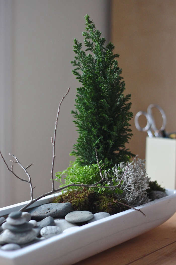 Indoor Zen Garden Ideas Part - 26: Gardenista