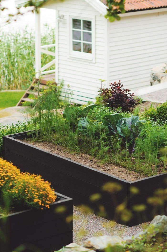 Trend Alert: Black-Stained Raised Beds - Gardenista