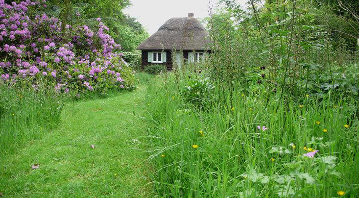 called tinkering with turf and grassy wild gardening by the garden writer anna pavord gardening in this way brings to mind the ideas of avant garde - Wild Garden