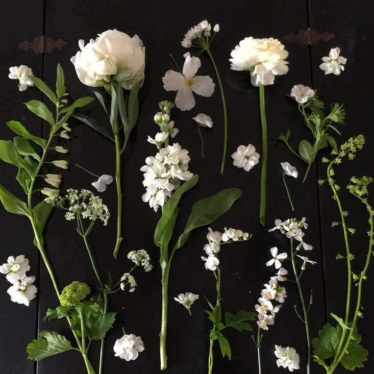 Expert advice 10 white garden ideas from petersham nurseries shopping list 13 favorite flowers mightylinksfo