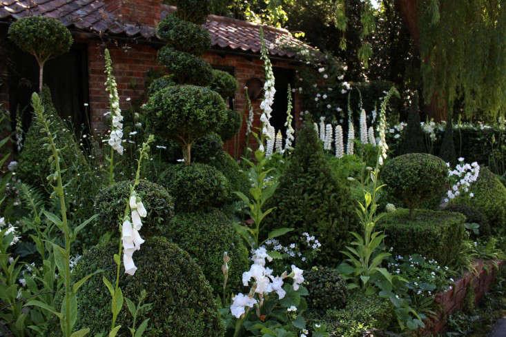 Expert advice 10 white garden ideas from petersham nurseries topiary backdrops mightylinksfo
