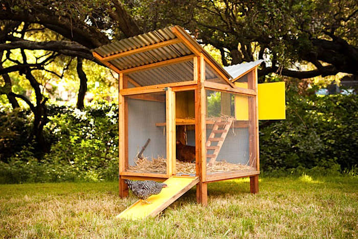 chick-in-a-box-coop - 5 Favorites: Backyard Chicken Coops For Small Flocks - Gardenista