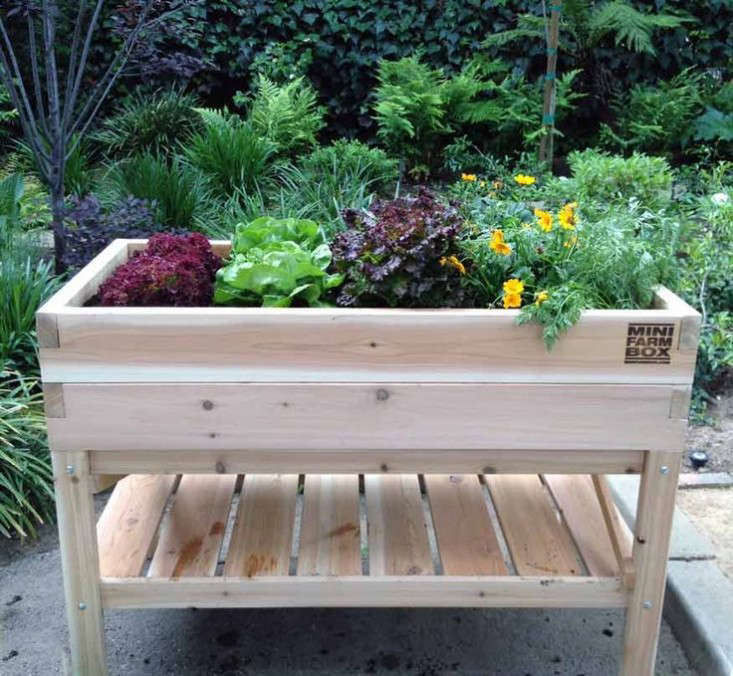 See this elevated table garden from Mini Farm Box and 9 other raised planters in Easy Pieces: Wooden Elevated Planters.