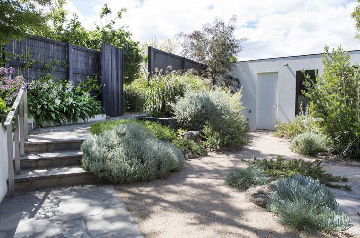10 garden ideas to steal from australia gardenistaa gray water irrigation system collects water from the washing machine and showers for use