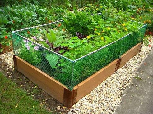 Nice Raised Garden Bed Rabbit Fence