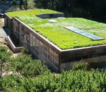 Architect Visit Rothschild Schwartz In Sausalito Gardenista