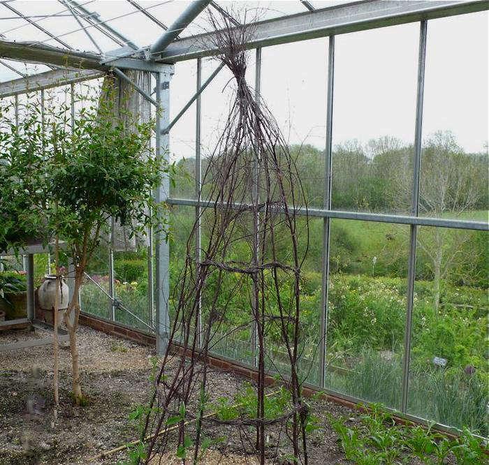 5 Favorites: Garden Tuteurs