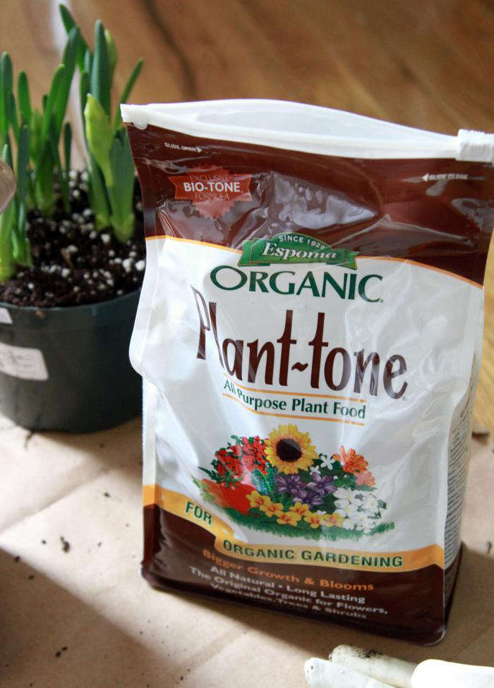 ORGANIC INDOOR PLANT COMPOST SOIL FOR INTERIOR LANDSCAPES AND CONTAINERS
