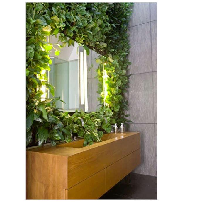 5 Favorites: Bathroom as Garden - Gardenista on aloe plant in bathroom, air plants in bathroom, prayer plant in bathroom,