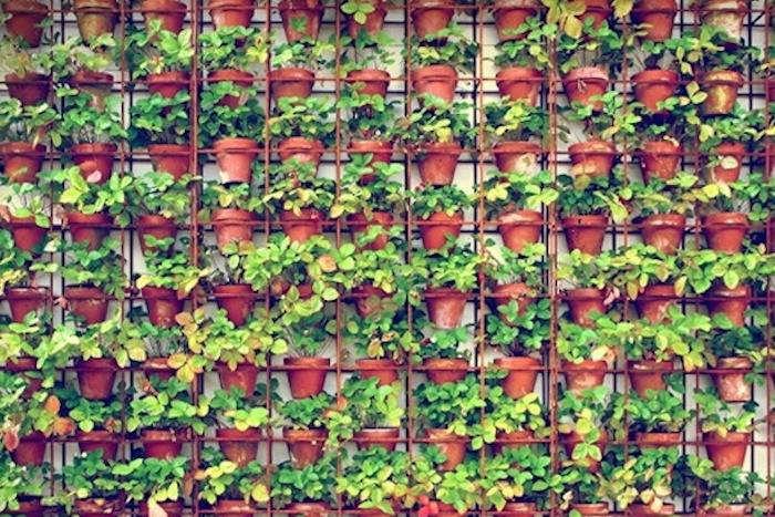 Joost Bakkeru0027s Vertical Gardens