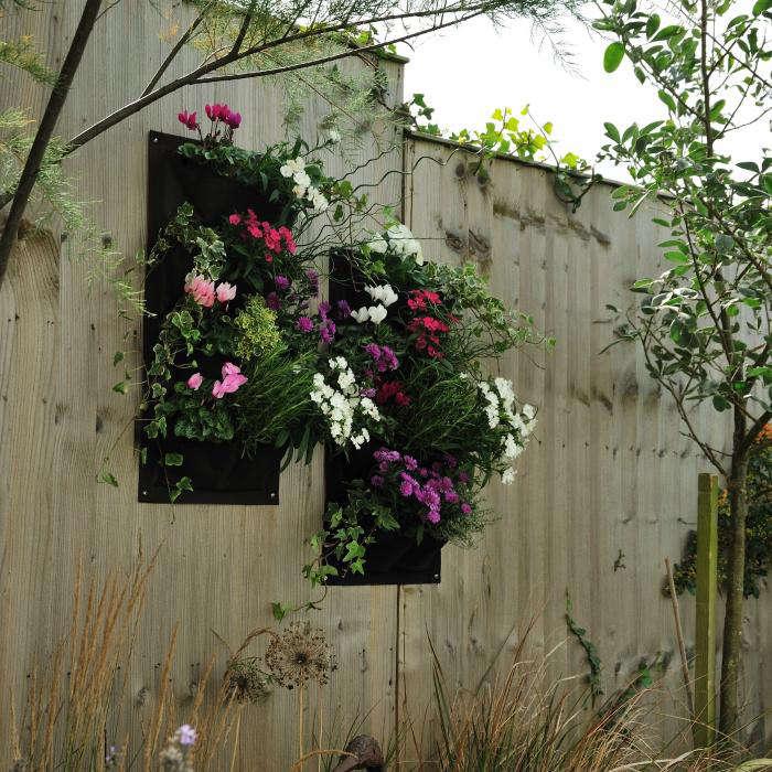 Coming To America The Balcony Gardener Gardenista