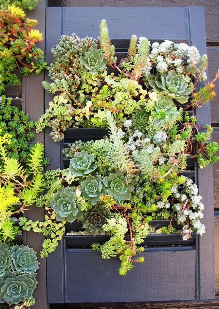 Vertical Gardens Made With Gardenista