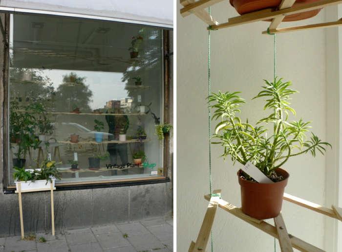 100 window shelves for plants 23 best tiered hanging basket