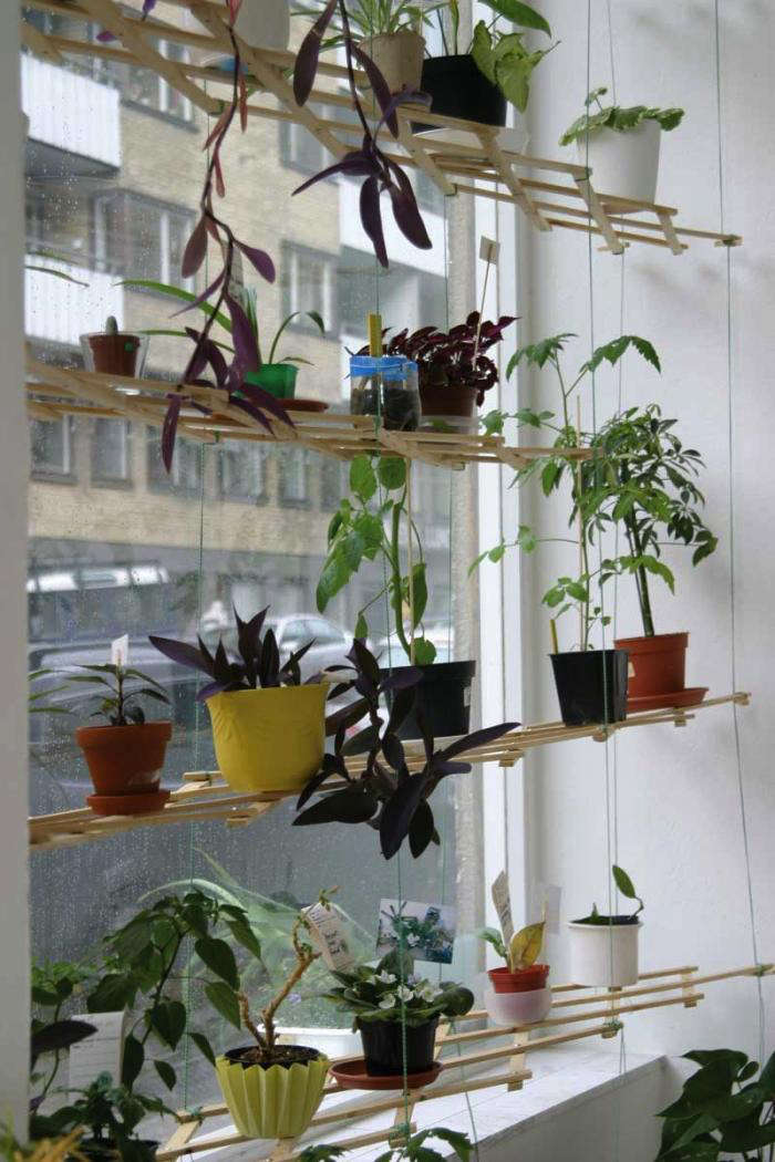 Diy instant hanging shelves for houseplants gardenista for Diy hanging picture display