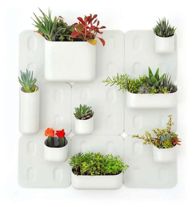 A Vertical Garden For The Urban Dweller