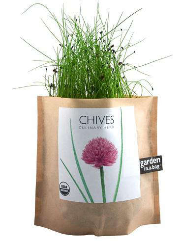 garden in a bag. Above: Chives Garden In A Bag; $9 From Branch Home. Bag