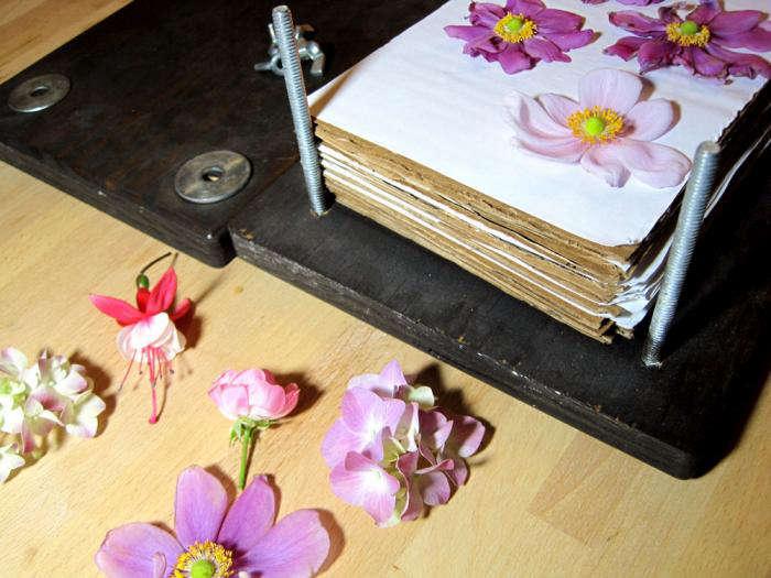 Diy Flower Press Gardenista