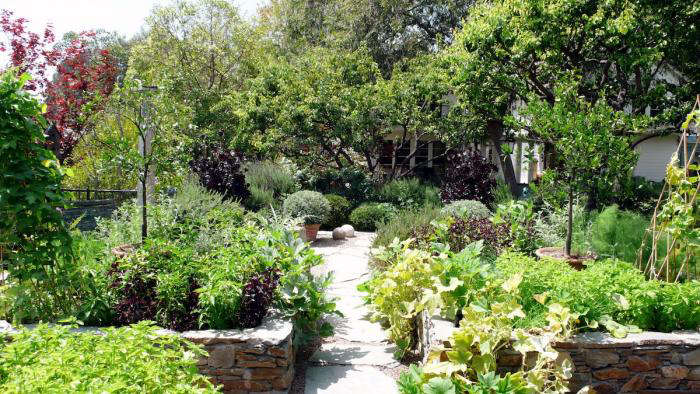 The Landscape Designer Is In Creating And Maintaining A Thriving