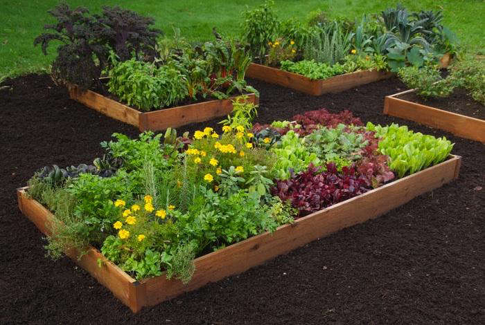 ... Needed To Build A Raised Bed. You Supply The Wood, Plants, And Labor.  The Kit Includes Powder Coated Heavy Gauge Steel Corner And Center  Brackets, ...