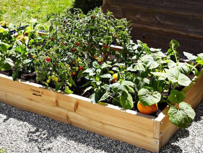 Above: Farmer D Organics Rectangular Raised Garden Bed Kit Is Made Of  FSC Certified Red Cedar And Measures 3 By 6 Feet; $199.95 At Williams  Sonoma.