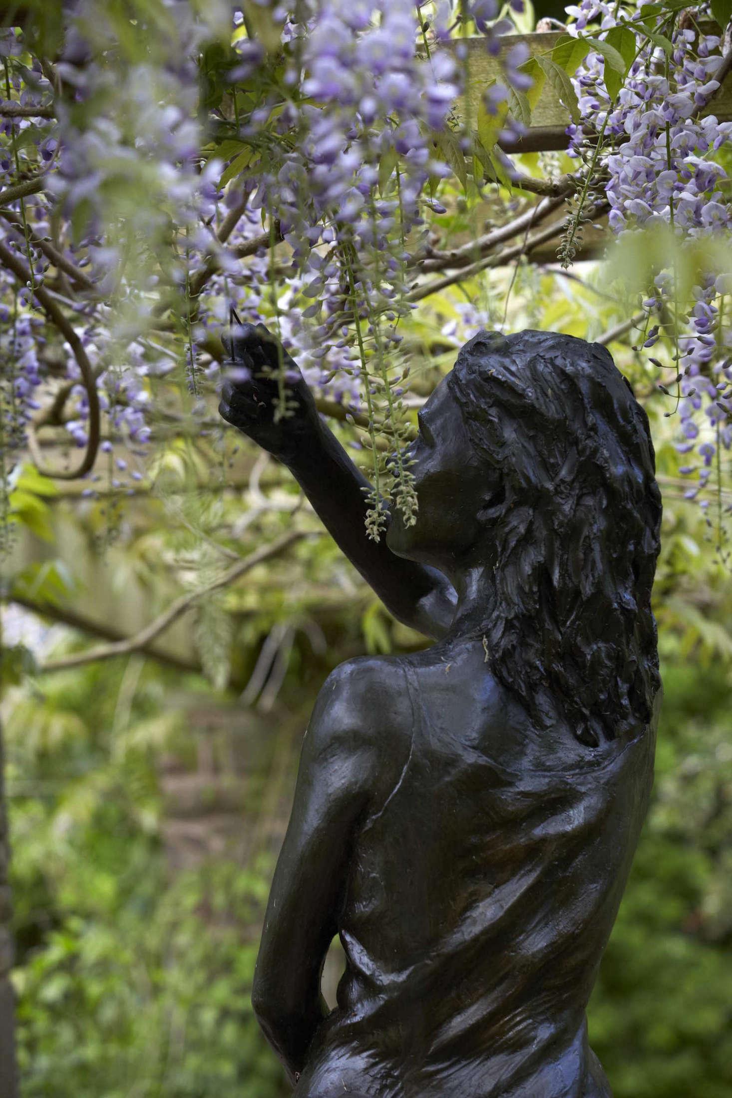 紫色的紫色玫瑰,用了更多的雕塑