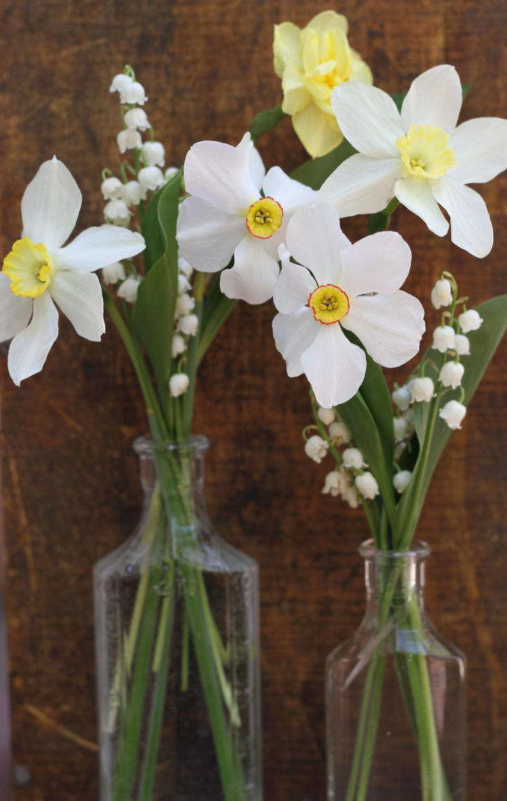 Bouquet Of The Week Posies Of Lily Of The Valley Gardenista