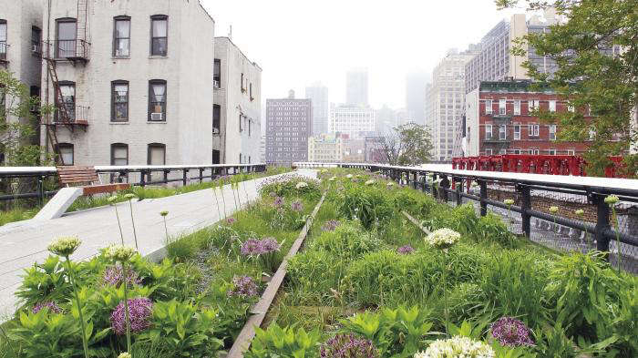 10 Garden Ideas To Steal From The High Line In New York City
