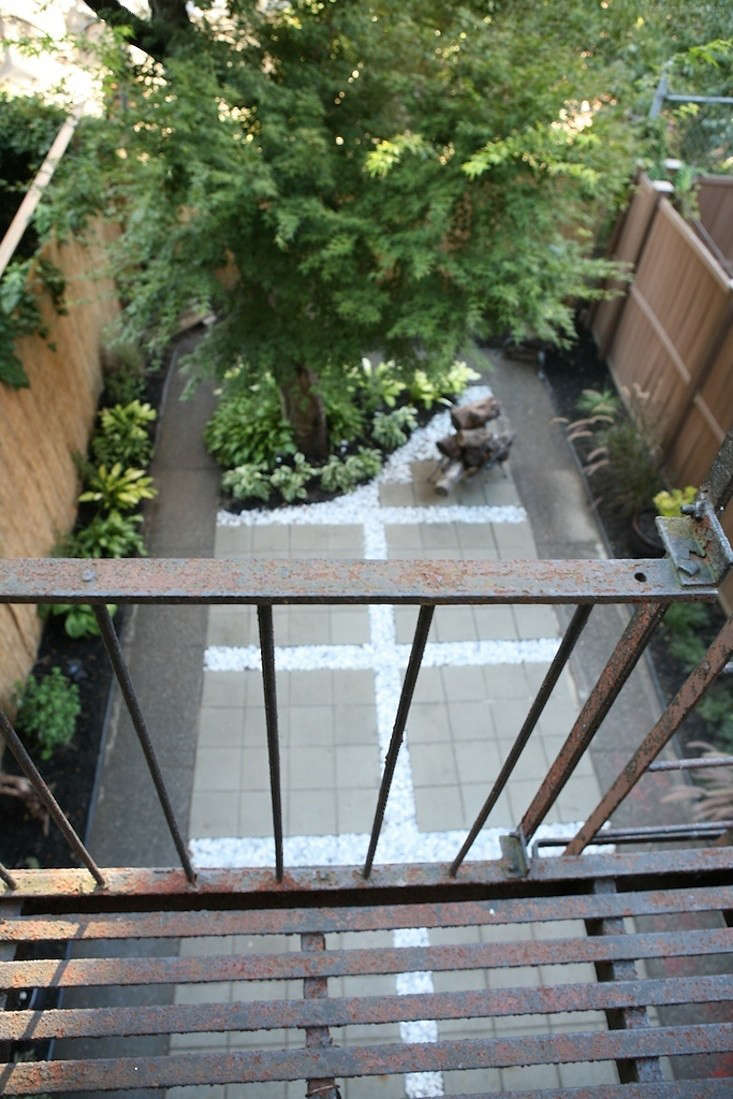 before and after a modern brooklyn backyard on a budget gardenista