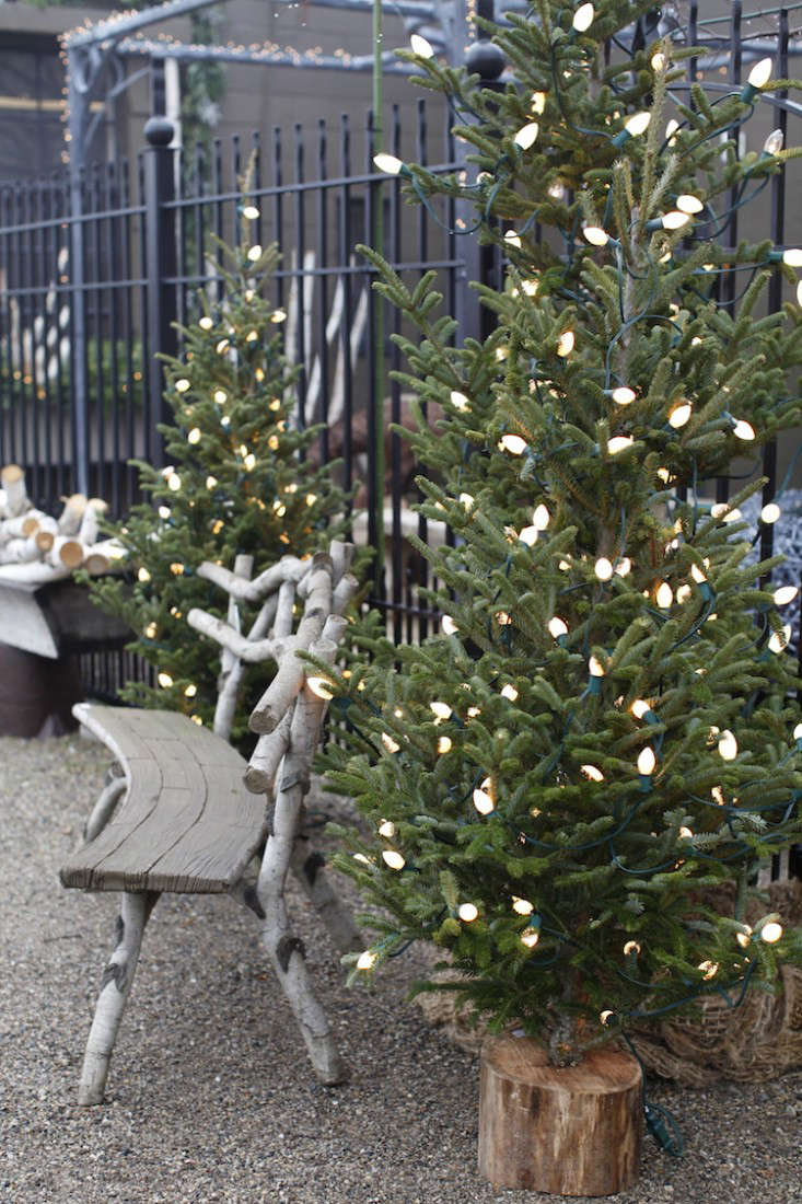 Christmas In Detroit A Pilgrimage To Gardeners Midwest